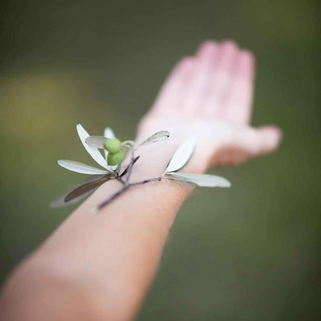 Nuestra piel se entiende bien con el olivo